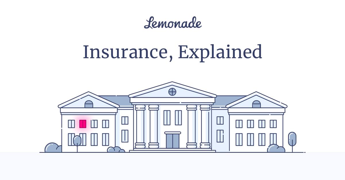 Insurance Terms In Plain English Insuropedia By Lemonade